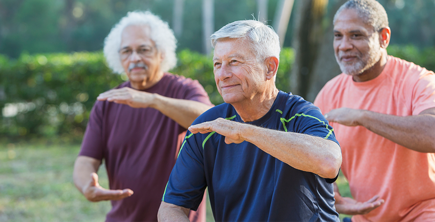 an advanced tai chi class outside