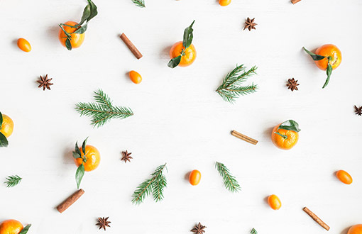 Spruce and oranges on a white background